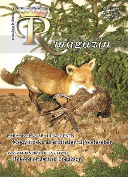 Rmagazin 2008 junius